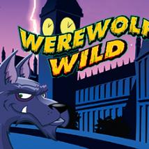 Werewolf Wild Banner