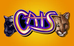 Cats by IGT