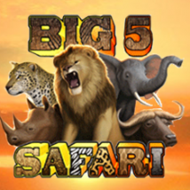 Big Safari Banner