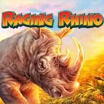 Raging Rhino Banner