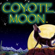 Coyote Moon Banner