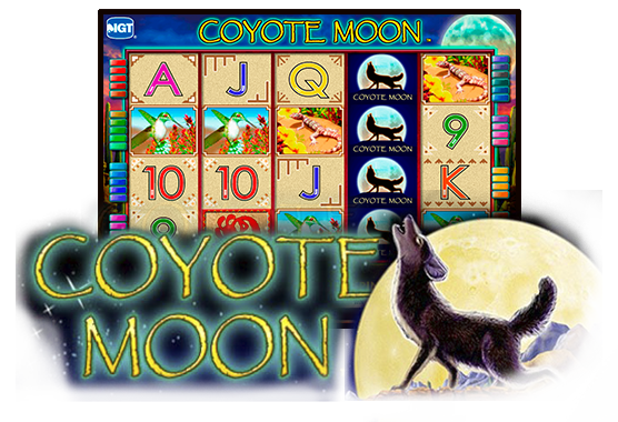 Coyote Mood Game