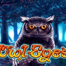 Owl Eyes Banner
