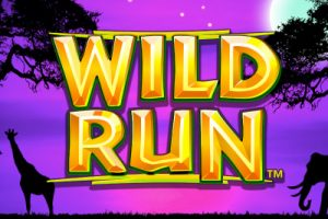 Wild Run Feature Image